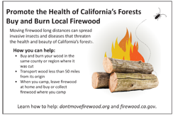 Buy and Burn Local Firewood Postcard