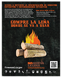 Compre La Leña Donde Se Va A Usar Poster: Sudden Oak Death, Goldspotted oak borer, pitch canker, Emerald ash borer, Asian longhorned beetle